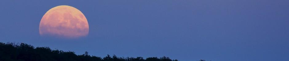 full-moon-914410